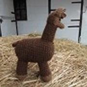 Crocheted Toys - Arthur