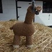 Crocheted Toys - Freddie
