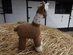 Crocheted Toys - Derby